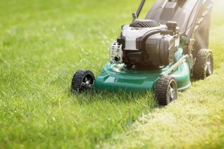 tonte pelouse rouen